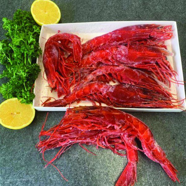 giant raw scarlett prawns