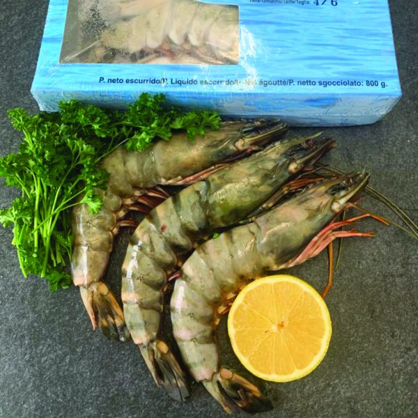Raw Extra Large Jumbo Prawns